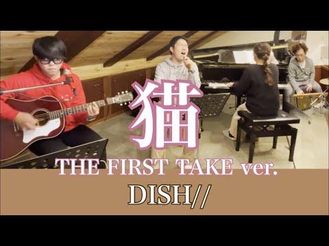 猫(First take ver.)カバー / DISH//