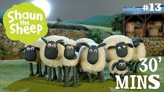 Những Chú Cừu Thông Minh - Tập 12 [30 phút]