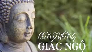Lời Phật Dạy Thâm Thúy Về Cuộc Sống giúp Bạn TỈNH NGỘ Tiêu Tan Mệt Mỏi