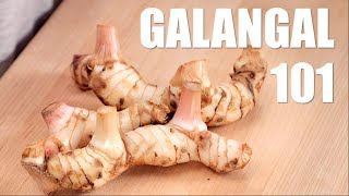 GALANGAL: Everything You Need to Know - Hot Thai Kitchen!