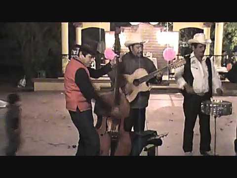 FLOR DE CAPOMO con Los Gavilancillos