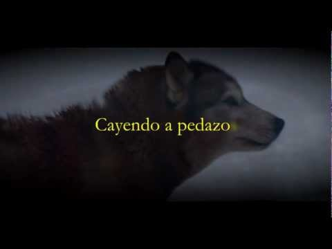 Baixar David Guetta ft. SIA - She Wolf (Cover Español) Video Lyric