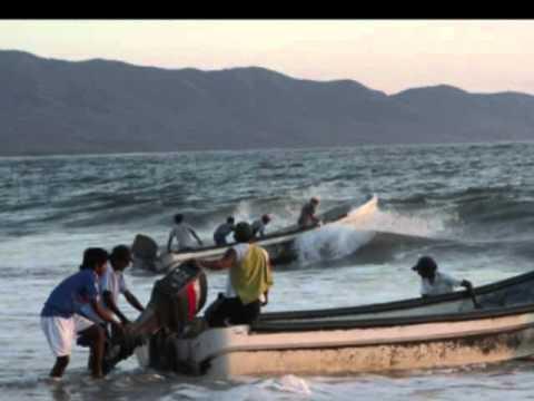 El pescador  con Celso Piña ft. Lila Downs