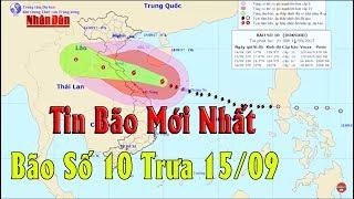 Tin Bão Mới Nhất Ngày 15/09 : Bão số 10 hoành hành Hà Tĩnh-Quảng Trị, sóng cao hơn 10 mét