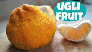Tasting Ugli Fruit - Fruity Fruits