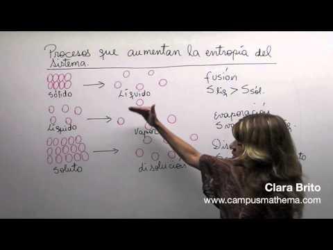 Termodinámica 16