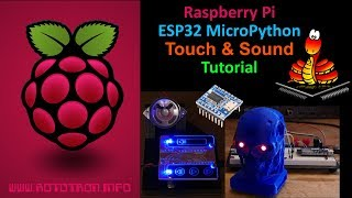 ESP32 MicroPython OLED Tutorial with ADC & FTP - rdagger68