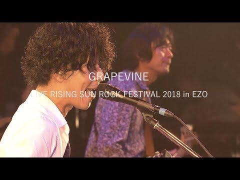 GRAPEVINE LIVE RISING SUN ROCK FESTIVAL 2018 in EZO (Trailer)