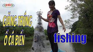 Em Gái Miệt Thứ Giăng Lưới Trúng ổ Cá Biển/sea fishing