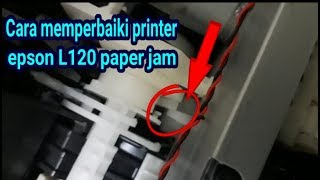 epson L120 multiple paper feed (Problem Solved!!!) - Printing