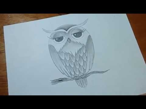 Como Dibujar Un Buho Facil Y Rapido Paso A Paso Videomovilescom