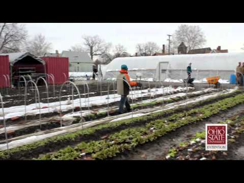 Cleveland urban farm creates jobs for people with disabilities