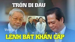 Nguyễn Phú Trọng Lệnh bắt Nguyễn Tấn Dũng vì lời khai này của em trai Đinh La Thăng hay chưa?