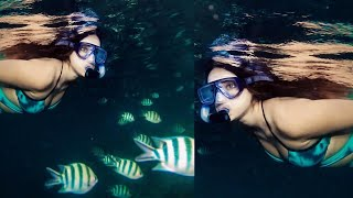 Ileana D'Cruz's latest post from an underwater photoshoot ..