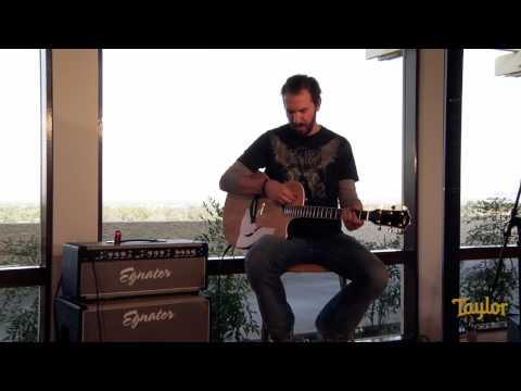 Taylor Guitars - T5
