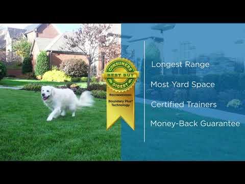 pet containment services