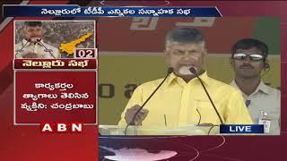 CM Chandrababu Naidu Speech in Praja Darbar Sabha at Nellore | Elections 2019 | Part 1 | ABN Telugu