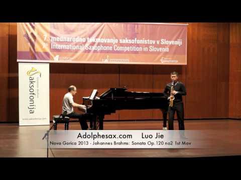 Luo Jie - Nova - Gorica 2013 - Johannes Brahms: Sonata Op 120 no2 1st Mov