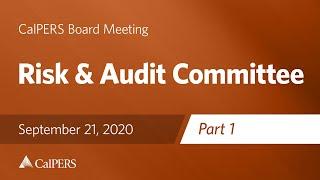 risk-audit-committee-part-1-september-21-2020.jpg