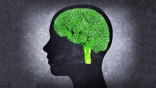 The 10 Best Foods To Boost Brain Power and Improve Memory