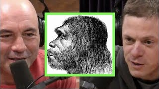 Joe Rogan & Steve Rinella on Neanderthals