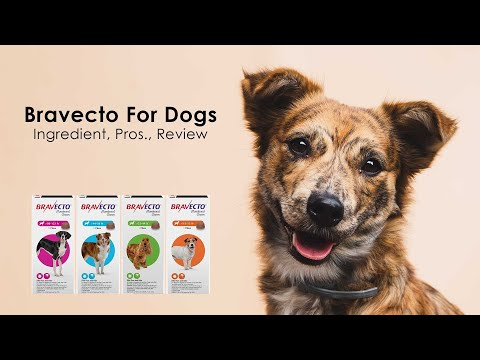 Bravecto For Dogs (Ingredient-Pros.-Review)