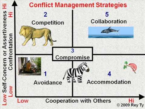 Negotiation Process Essay - Part 2