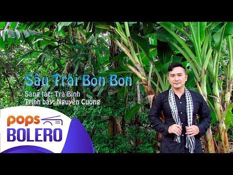 Sầu Trái Bòn Bon | Nguyễn Cường