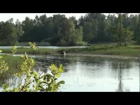 Тихая река - Юлия Чичерина. арТзаЛ 3D HD