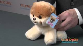 Boo - The World's Cutest Dog from Gund