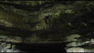 Espeloelogía en la cueva del indio