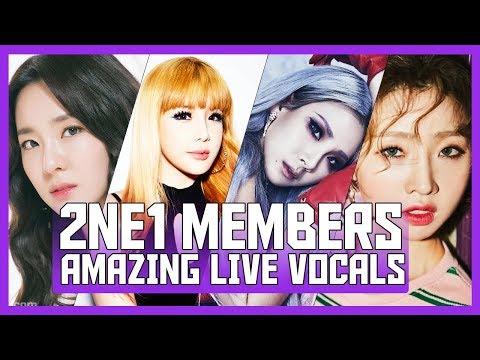2NE1's IMPRESSIVE VOCALS | 투애니원
