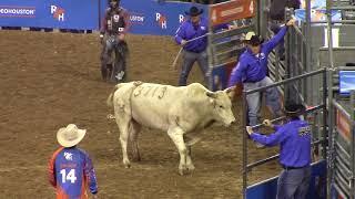 Houston rodeo 2018 bull riding