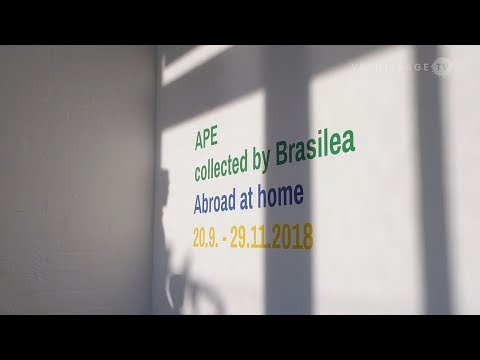 APE Collected by Brasilea: Abroad at Home – Anniversary Exhibition at Brasilea Basel