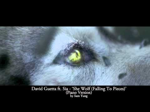 Baixar 'She Wolf (Falling To Pieces)' - David Guetta ft. Sia - (Piano Cover) by Sam Yung