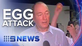 Reaction to the Fraser Anning egg attack   Nine News Australia