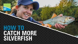 A thumbnail for the match fishing video HOW TO Catch More Silverfish!