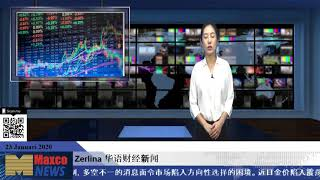 zerlina  华语财经新闻  1。23news