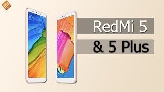 Video Xiaomi Redmi 5 plus RT2NbE59DcE