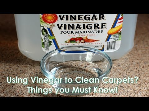 Using Vinegar to Clean Carpets? Things you Must Know!