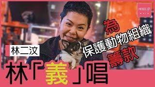 林二汶   林「義」唱    為保護動物組織籌款