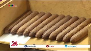 Cigar Cuba ngon vì được cuốn trên đùi các cô trinh nữ?- Tin Tức VTV24