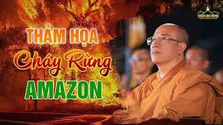 Thảm Họa Cháy Rừng Amazon -  Lời Cảnh Báo Cho Trái Đất | Thầy Thích Trúc Thái Minh