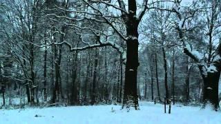 فيروز، رجعت الشتوية