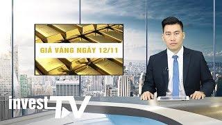 Giá vàng hôm nay 12/11/2019