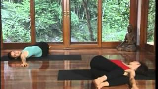 йога основной курс  Louisa Sear  Rachel Zinman