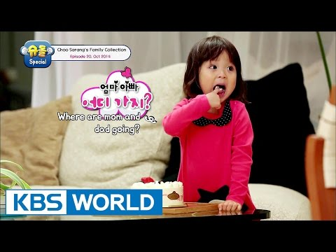 The Return of Superman - Choo Sarang Special Ep.20 [ENG/2017.01.19]