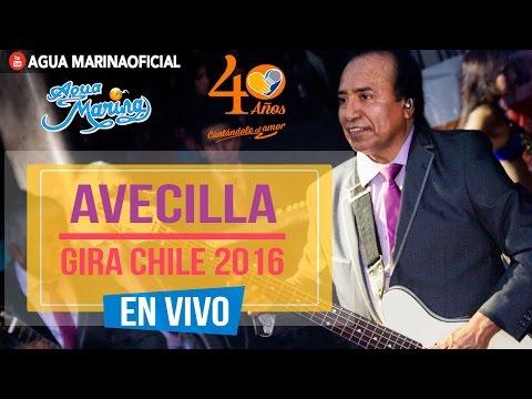Agua Marina - Avecilla (Chile 2016)