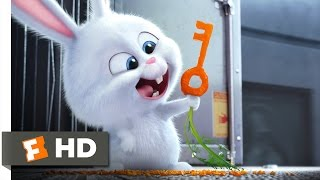 The Secret Life of Pets - Busting You Out! Scene (3/10)   Movieclips
