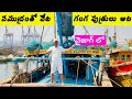 Vizag Fishermen | Visakhapatnam Fishing Harbour